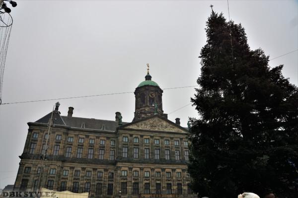 Amsterdam 555 DBK Stylez